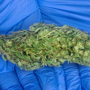 OilWell CBD Indoor Indica Kush CBD Hemp Flower (15.99% Cannabinoids)