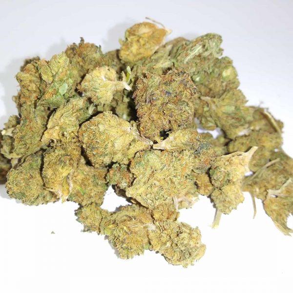Wholesale and bulk Houston Hemp CBD Flower by the Pound 3