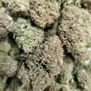 Wholesale and bulk Houston Hemp CBD Flower by the Pound 6