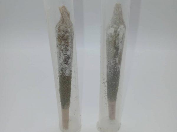 Cannaviar Hemp CBD Pre-Rolls with Kief, Hemp CBD Wax Dabs, and CBD Isolate